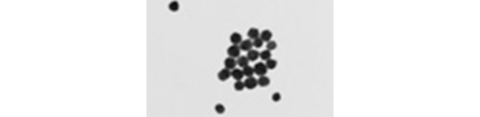 70nm_Carboxyl_Gold_Nanoparticles_3kDa_PEG_linker